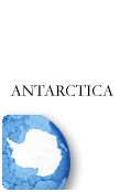 Antarctica PINZOO Gold Phone Cards