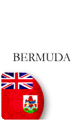 Bermuda PINZOO Bronze Phone Cards