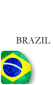Brazil PINZOO Bronze Phone Cards