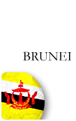 Brunei PINZOO Bronze Phone Cards