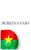 Burkina Faso PINZOO Bronze Phone Cards