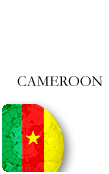 Cameroon PINZOO Bronze Phone Cards