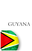 Guyana PINZOO Bronze Phone Cards
