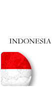 Indonesia PINZOO Bronze Phone Cards