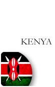 Kenya PINZOO Bronze Phone Cards