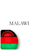 Malawi PINZOO Bronze Phone Cards