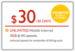 Buy the $30.00 Red Pocket Mobile Refill Minutes Instant Prepaid Airtime | On SALE for Only $29.86