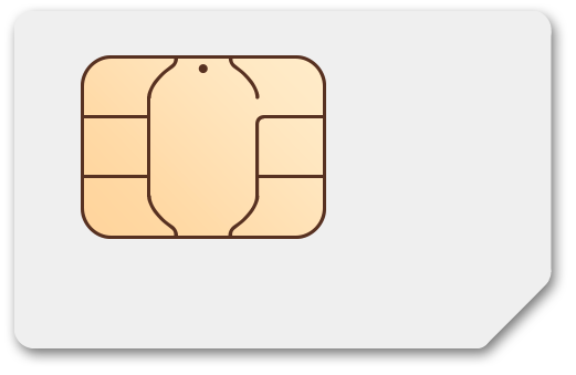$10.00 Net10® Prepaid Wireless SIM Cards